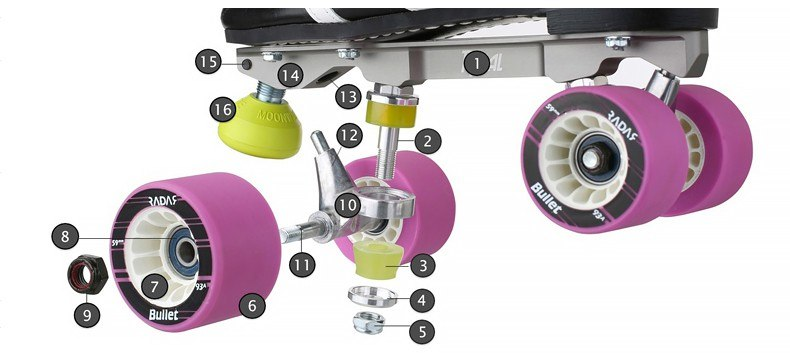 Anatomy of a Skate Plate